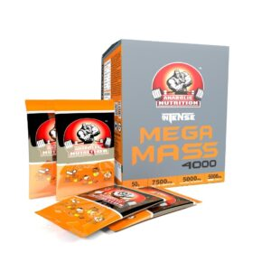 ANABOLIC NUTRITION INTENSE MEGA MASS 4000